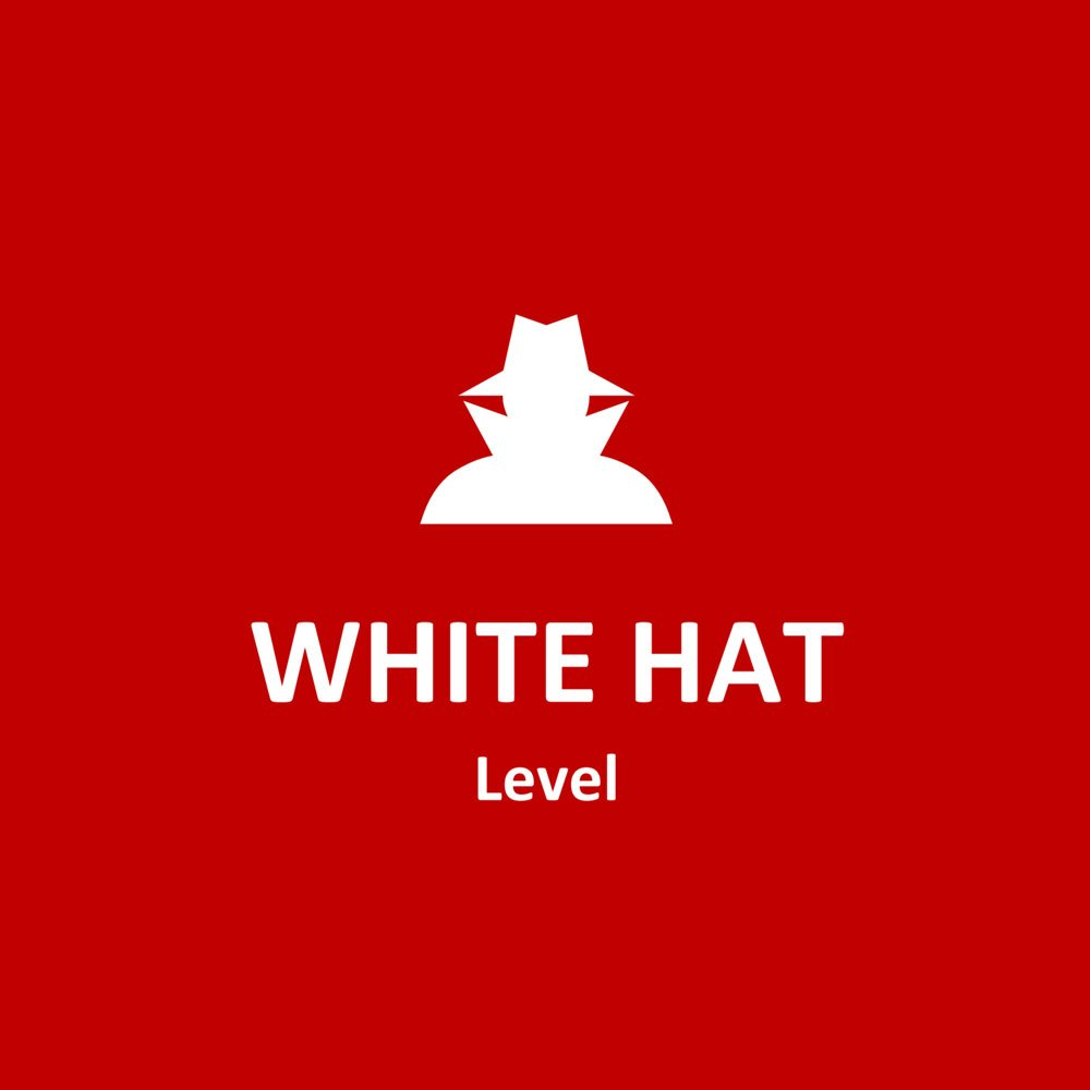 vulnerability assessment white hat